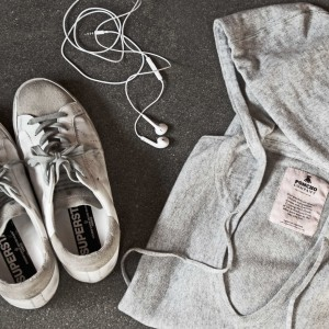Grey-and-GoldenGoose